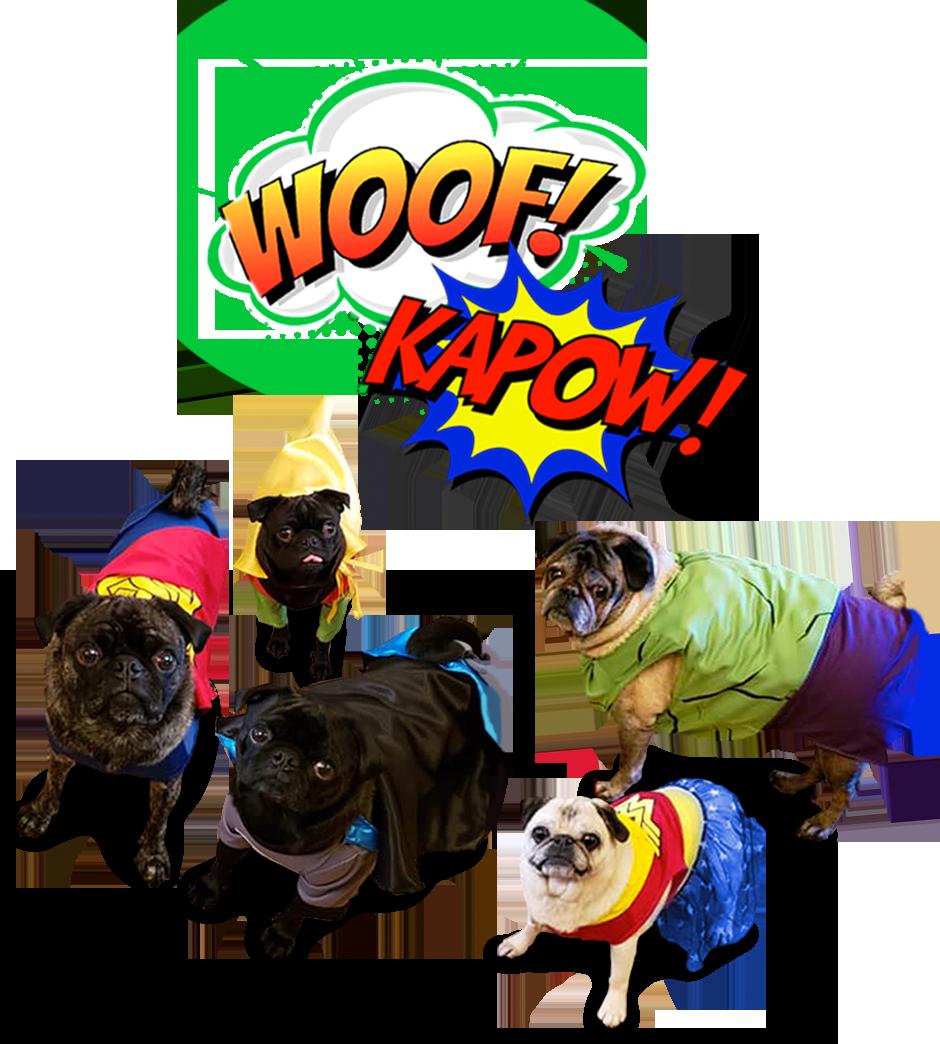 superhero pugs woof kapow